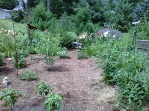 East Ave Garden
